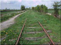 SU1091 : Disused railway track, South Meadow Lane by Vieve Forward