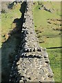 NY6766 : Hadrian's Wall west of Turret 45a (2) by Mike Quinn