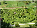 SW7727 : Glendurgan Gardens - maze by Chris Allen
