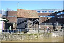 SU9949 : Crane by the Wey by N Chadwick