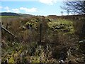 NS3284 : Drainage channel beside field boundary by Lairich Rig