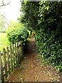 TM3992 : Footpath to The Old Rectory by Adrian Cable