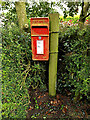 TM4195 : Maypole Green Postbox by Adrian Cable