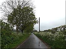 TM4493 : Waterheath Road, Aldeby by Adrian Cable