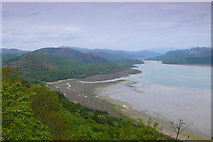 SH6216 : Coedwigoedd Llydanddail uwchben Cutiau / Broadleaf Woodlands above Cutiau by Ian Medcalf