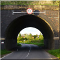 SK6132 : Railway Bridge over Bradmore Lane by David Lally