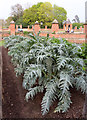 SO9463 : Vegetable Garden at Hanbury Hall by Kate Jewell
