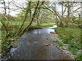 SX0981 : The River Camel at Kenningstock Mill by Rod Allday
