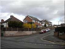 SK5845 : Bottom of Brackendale Avenue, Arnold by Richard Vince