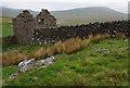 NY8006 : Ruined barn, Reigill by Ian Taylor
