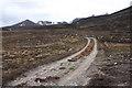 NO2588 : Track near Gelder Shiel by Dorothy Carse