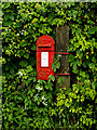 TM4494 : Waterheath Road George V Postbox by Adrian Cable
