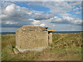 TG4919 : Royal Observer Corps post in the Winterton dunes by Evelyn Simak