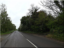 TM4493 : Beccles Road, Aldeby by Adrian Cable