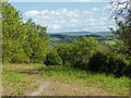 TQ0348 : The view from St Martha's Hill by Alan Hunt