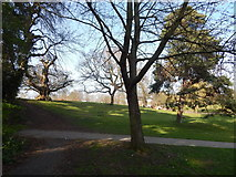 TM1645 : Where the paths cross, Christchurch Park by Hamish Griffin