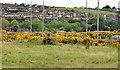 J4873 : The Castlebawn site, Newtownards - May 2014(2) by Albert Bridge