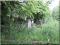 SK3485 : Headstones in Sheffield General Cemetery by Graham Robson