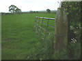 SD5243 : Cut bench mark on gatepost, Gardener's Lane by Karl and Ali