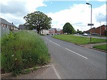 ST0107 : Cullompton: Tiverton Road by Martin Bodman