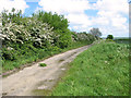 TG0437 : Disused section of Holt Road by Evelyn Simak