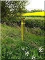 TM3470 : Footpath Marker by Geographer