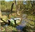 SU8682 : An Old Brick Pit by Des Blenkinsopp