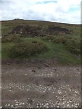SX7375 : Site of a small moorland fire on Blackslade Down by David Smith
