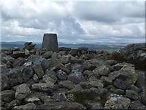 SX7475 : The trig point  pillar on Rippon Tor by David Smith