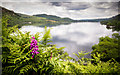 NY3918 : Ullswater from below Low Birk Fell by Kim Fyson