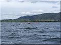 NO1401 : Marker buoys in Loch Leven by William Starkey