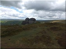 SX7278 : Granite outcrop on Chinkwell Tor by David Smith