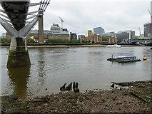 TQ3280 : Millennium Bridge, London EC2 by Christine Matthews