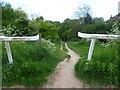 TQ2157 : Path to Walton Downs by Marathon