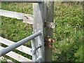 NR3994 : Gate latch at Scalasaig by M J Richardson