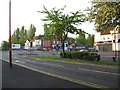 SP0894 : Early morning on Kings Road 2-Kingstanding, Birmingham by Martin Richard Phelan