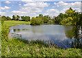 SP5241 : Lake, Thenford Arboretum by David P Howard