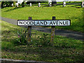 TM4489 : Woodland Avenue sign by Adrian Cable
