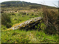 NX5257 : Burial cist by David Baird