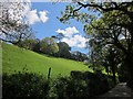 SX3468 : Hillside, Newbridge by Derek Harper