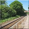 TL8929 : Looking to Spring Gardens Road bridge over Sudbury Branch Line by Roger Jones