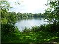 TQ5156 : View across West Lake at Sevenoaks Wildlife Reserve by Marathon