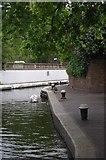 "TQ2681 : ""Facilities"" Mooring Near Little Venice by Glyn Baker"