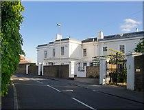 TQ0866 : Walton Lane, Lower Halliford by Stefan Czapski