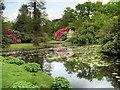 SJ7481 : Tatton Park, Golden Brook by David Dixon