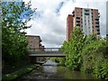 SJ8798 : Bridge 9A, Ashton Canal, from the east by Christine Johnstone