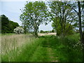 TQ9016 : The route of The Saxon Shore Way and the Royal Military Canal Path by Marathon