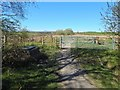 NS5085 : Farm track crossing West Highland Way by Lairich Rig