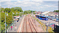 TQ9120 : Rye Station, 'Marshlink Line' by Ben Brooksbank