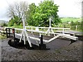 SK0084 : Carr Swing Bridge [No 30], Peak Forest Canal by Christine Johnstone